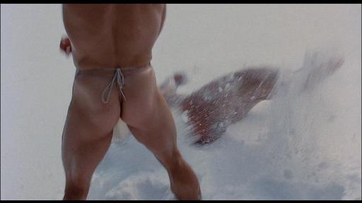 Arnold Scwarzenegger Nude
