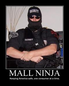 mall ninja