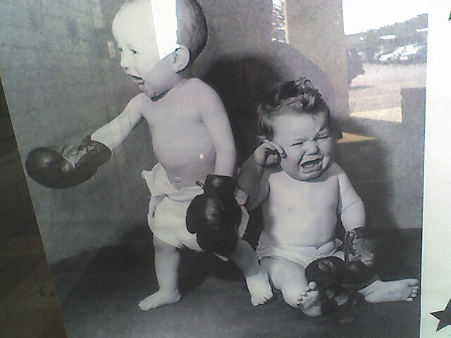 babies boxing