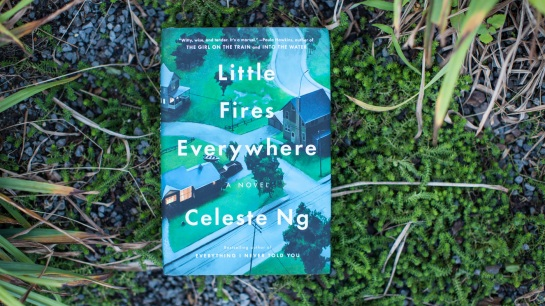 2017-09-07_little-fires-everywhere_books_cascani_05