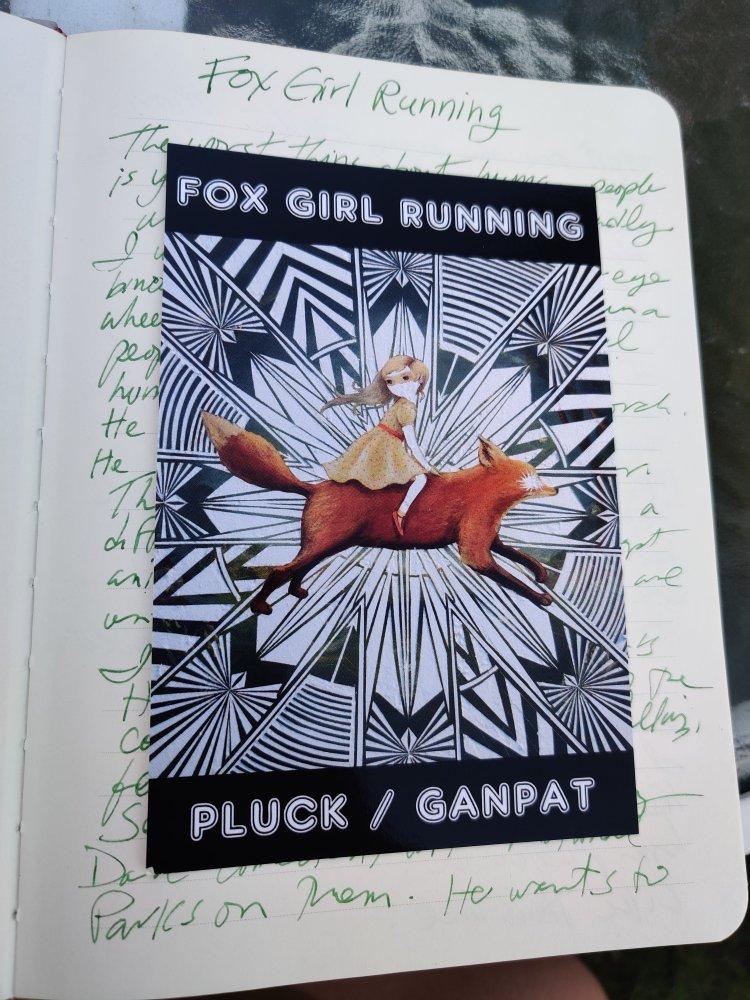 Masked girl riding a fox across a star-burst